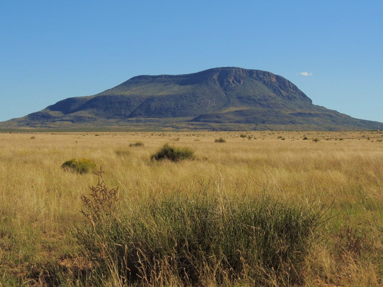 otero mesa the last pristine desert grassland the. Black Bedroom Furniture Sets. Home Design Ideas